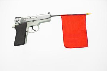 Red Flag Gun Law?
